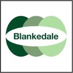 Link Blankedale Site
